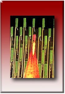 Química de Bachillerato: Calor y Movimiento (bibliotecadigital.ilce.edu.mx)