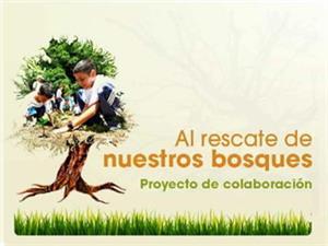 Proyecto Al rescate de nuestros bosques, reforestación