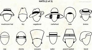 Hats 2  (Visual Dictionary)
