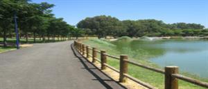 Parque Miraflores: Experiencia medioambiental