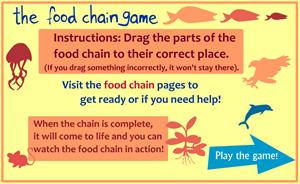 Kid's Corner - Food Chain Game. Juego digital cadena alimentaria