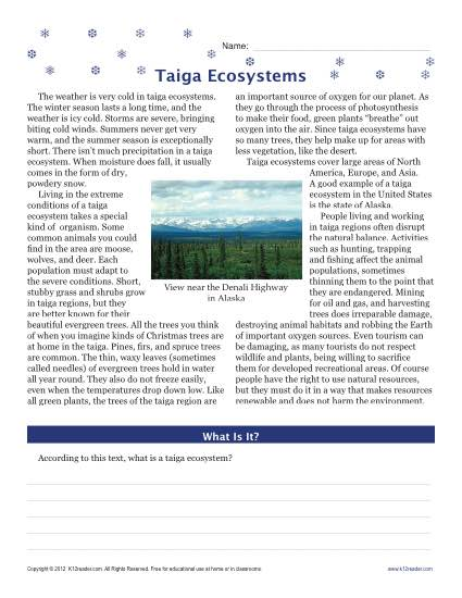 Taiga Ecosystems