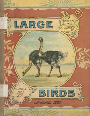 Large birds (International Children's Digital Library)