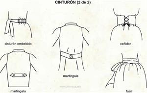 Cinto (Diccionario visual)