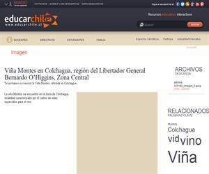 Viña Montes, Colchagua (Educarchile)