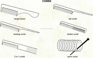 Combs  (Visual Dictionary)