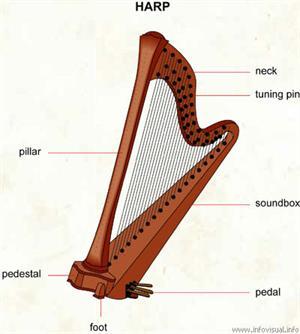 Harp  (Visual Dictionary)