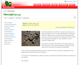 Víbora áspid (Vipera aspis)