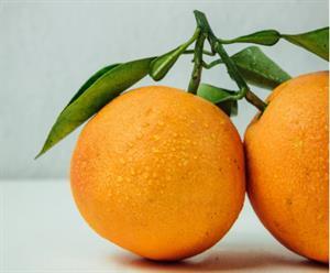Problema del ladrón de naranjas (Retomates)