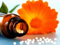 Plantas medicinales (natureduca.com)