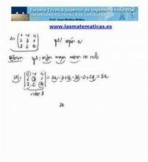 Rango por determinantes (parámetros)