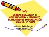 Comunicación y lenguaje. El proceso de comunicación