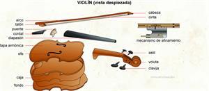 Violín (Diccionario visual)