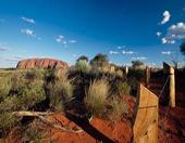 Els viatgers de la gran anaconda. Austràlia