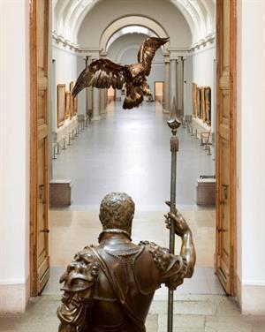 Historias Naturales: ciencia, naturaleza y arte en el Museo del Prado