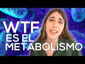 Metabolismo, ¿qué significa realmente?