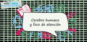 Cerebro humano y foco de atención (PerúEduca)