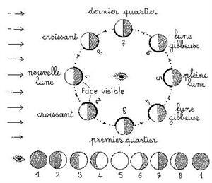 Les éclipses de soleil : simulation, observation…