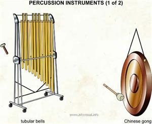 Percussion instruments (1 of 2)  (Visual Dictionary)