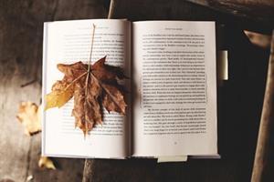 Atrévete a aprender, empieza…Lengua y literatura