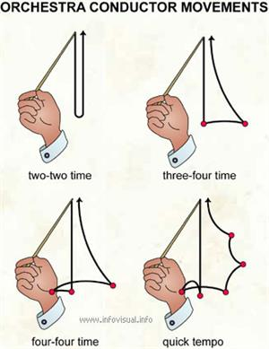 Orchestra conductor movements  (Visual Dictionary)
