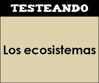 Los ecosistemas. 4º Primaria - Conocimiento del medio (Testeando)