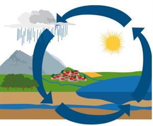 El ciclo del agua en la Tierra. Experimento de Medio ambiente para niños de 8 a 12 años