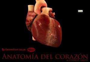Anatomía del corazón, una guía educativa multimedia