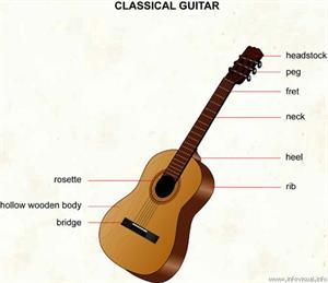 Classical guitar  (Visual Dictionary)