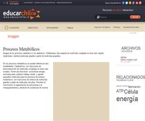 Procesos Metabólicos (Educarchile)