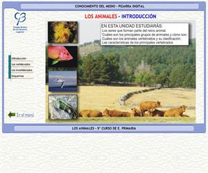 Los animales – Conocimiento del medio – 3º Ciclo de E. Primaria – Unidad didáctica.