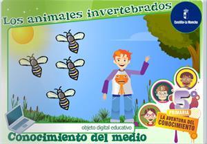 Los animales invertebrados (Cuadernia)