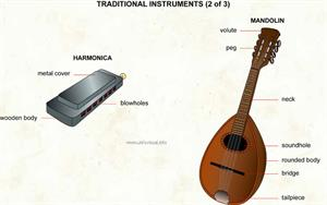 Traditional instruments (2 of 3)  (Visual Dictionary)