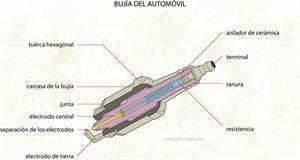 Bujía (Diccionario visual)