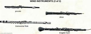 Wind instruments 2  (Visual Dictionary)