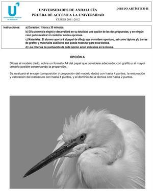 Examen de Selectividad: Dibujo Artístico 1. Andalucía. Convocatoria Junio 2012