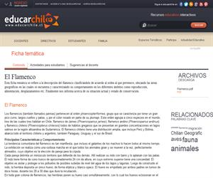 Ficha Flamenco (Educarchile)
