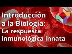 La respuesta inmunológica innata