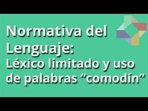 LÉXICO LIMITADO Y USO DE PALABRAS COMODÍN