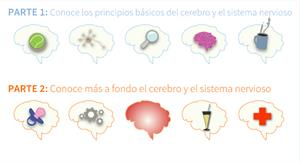 ¡Enamórate de tu cerebro! (Ambientech)