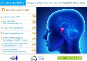 El sistema endocrino es importante para la salud