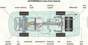 Automobile (view from below)  (Visual Dictionary)