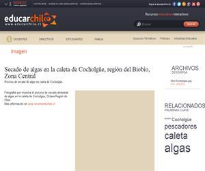 Caleta de Cocholgüe (Educarchile)
