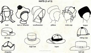 Hats 3  (Visual Dictionary)