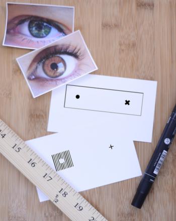 Retinal Blind Spots