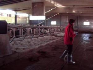 O control de calidade na explotación de vacún de leite