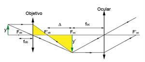 Instrumentos ópticos. El ojo humano