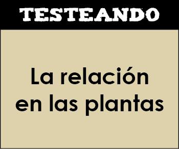 La relación en las plantas. 1º Bachillerato - Biología (Testeando)