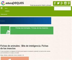 Fichas de Animales: Fichas de los insectos gratuitas y para descargar.