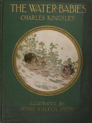 The water-babies  (International Children's Digital Library)